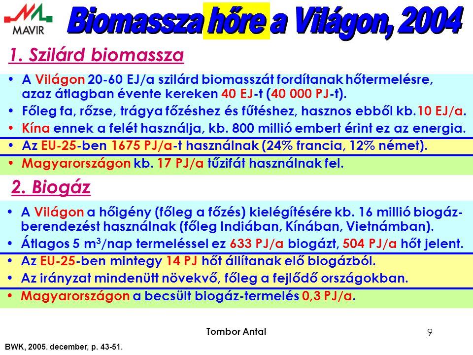 Tombor Antal 9 A Világon 20-60 EJ/a szilárd biomasszát fordítanak hőtermelésre, azaz átlagban évente kereken 40 EJ-t (40 000 PJ-t).