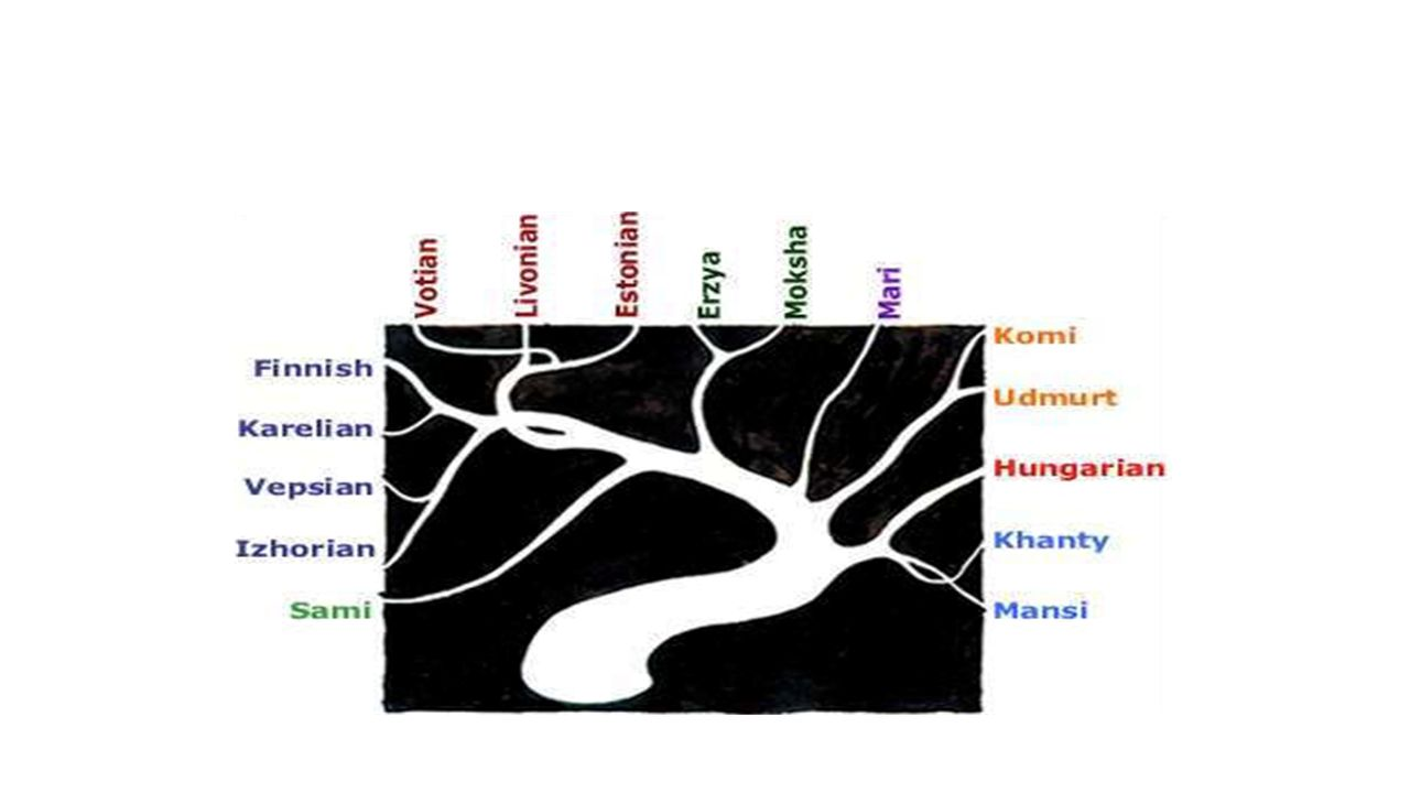Dutch-Estonian-Finnish- Khalkha (Mongolian)-Mansi- Turkish-Uyghur What is the distance from Hungarian?