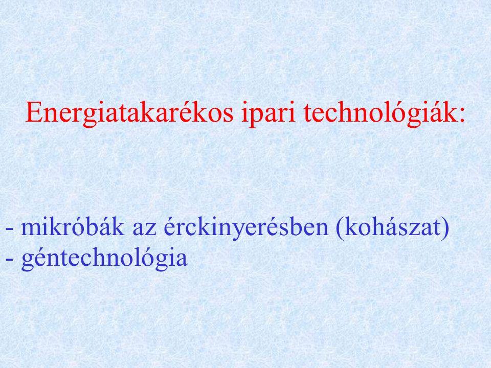 Energiatakarékos ipari technológiák: - mikróbák az érckinyerésben (kohászat) - géntechnológia