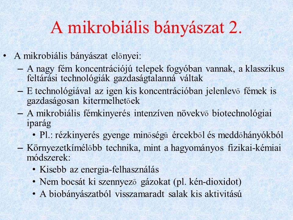 A mikrobiális bányászat 2.