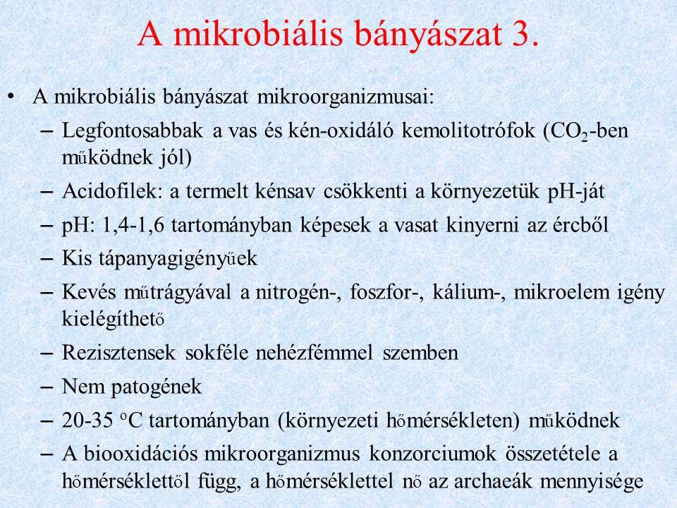 A mikrobiális bányászat 3.