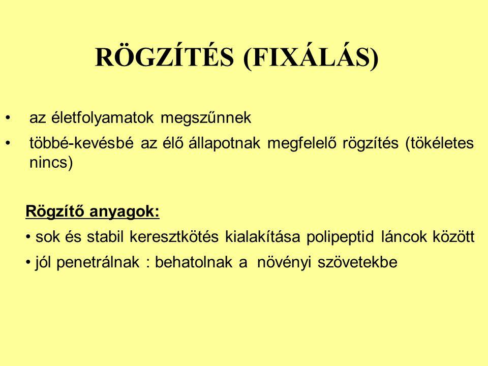 RÖGZÍTÉS (FIXÁLÁS) az életfolyamatok megszűnnek többé-kevésbé az élő állapotnak megfelelő rögzítés (tökéletes nincs) Rögzítő anyagok: sok és stabil keresztkötés kialakítása polipeptid láncok között jól penetrálnak : behatolnak a növényi szövetekbe