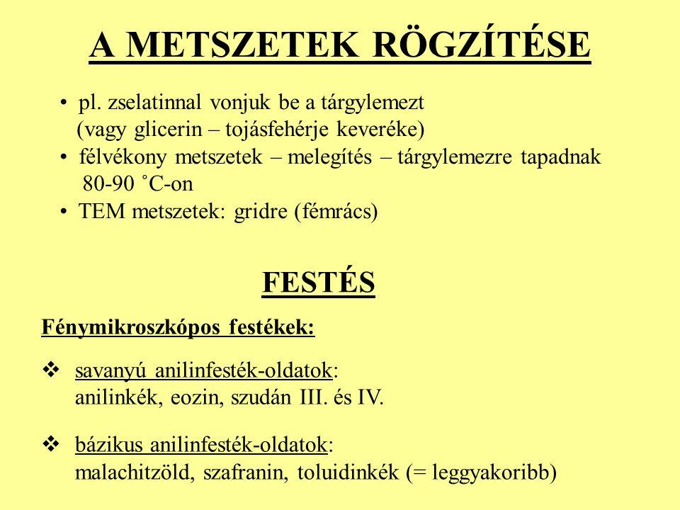 A METSZETEK RÖGZÍTÉSE pl.