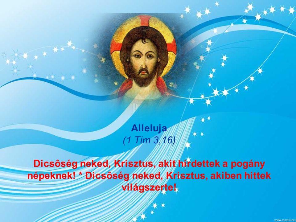 Szent Lecke Ef 1,3-6.15-18 A Fiú megtestesülése az Atya örök gondolata és terve volt.
