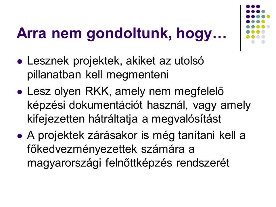 Arra nem gondoltunk, hogy… Lesznek projektek, akiket az utolsó pillanatban kell megmenteni Lesz olyen RKK, amely nem megfelelő képzési dokumentációt használ, vagy amely kifejezetten hátráltatja a megvalósítást A projektek zárásakor is még tanítani kell a főkedvezményezettek számára a magyarországi felnőttképzés rendszerét