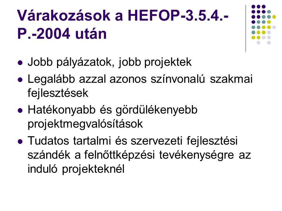Várakozások a HEFOP-3.5.4.- P.-2004 után Jobb pályázatok, jobb projektek Legalább azzal azonos színvonalú szakmai fejlesztések Hatékonyabb és gördülékenyebb projektmegvalósítások Tudatos tartalmi és szervezeti fejlesztési szándék a felnőttképzési tevékenységre az induló projekteknél