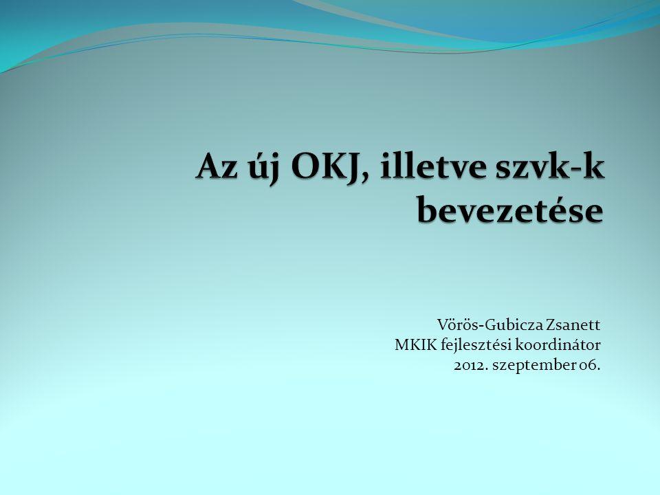 Vörös-Gubicza Zsanett MKIK fejlesztési koordinátor 2012. szeptember 06.