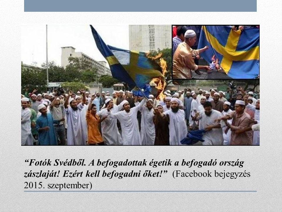 Fotók Svédből. A befogadottak égetik a befogadó ország zászlaját.
