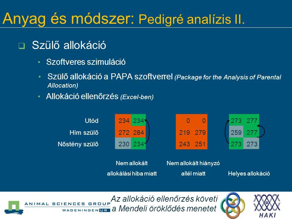 Anyag és módszer: Pedigré analízis II.  Szülő allokáció Szoftveres szimuláció Szülő allokáció a PAPA szoftverrel (Package for the Analysis of Parenta
