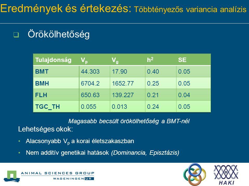 Eredmények és értekezés: Többtényezős variancia analízis  Örökölhetőség Magasabb becsült örökölhetőség a BMT-nél Lehetséges okok: Alacsonyabb V p a korai életszakaszban Nem additív genetikai hatások (Dominancia, Episztázis)