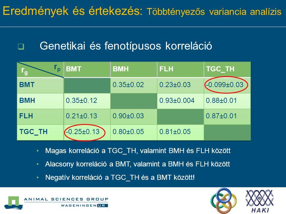 Eredmények és értekezés: Többtényezős variancia analízis  Genetikai és fenotípusos korreláció rprp Magas korreláció a TGC_TH, valamint BMH és FLH között Alacsony korreláció a BMT, valamint a BMH és FLH között Negatív korreláció a TGC_TH és a BMT között!