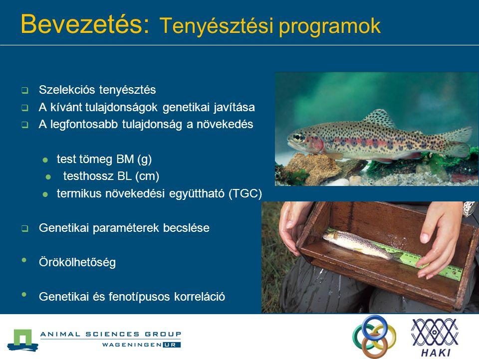 Bevezetés: Tenyésztési programok  Szelekciós tenyésztés  A kívánt tulajdonságok genetikai javítása  A legfontosabb tulajdonság a növekedés test töm