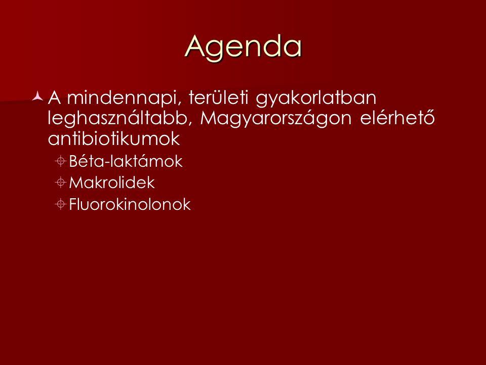 Agenda A mindennapi, területi gyakorlatban leghasználtabb, Magyarországon elérhető antibiotikumok  Béta-laktámok  Makrolidek  Fluorokinolonok Nem lesz szó, bár interakció tekintetében speciális betegcsoportokon a legjelentősebbek  Azol csoportba tartozó antifungális szerek  Anti-retrovirális szerek
