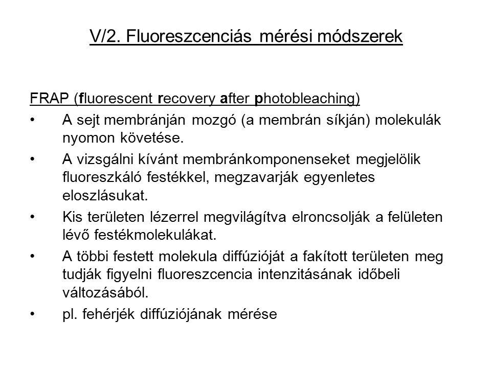V/2. Fluoreszcenciás mérési módszerek FRAP (fluorescent recovery after photobleaching) A sejt membránján mozgó (a membrán síkján) molekulák nyomon köv