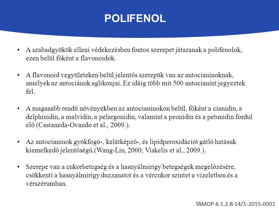 POLIFENOL A szabadgyökök elleni védekezésben fontos szerepet játszanak a polifenolok, ezen belül főként a flavonoidok. A flavonoid vegyületeken belül