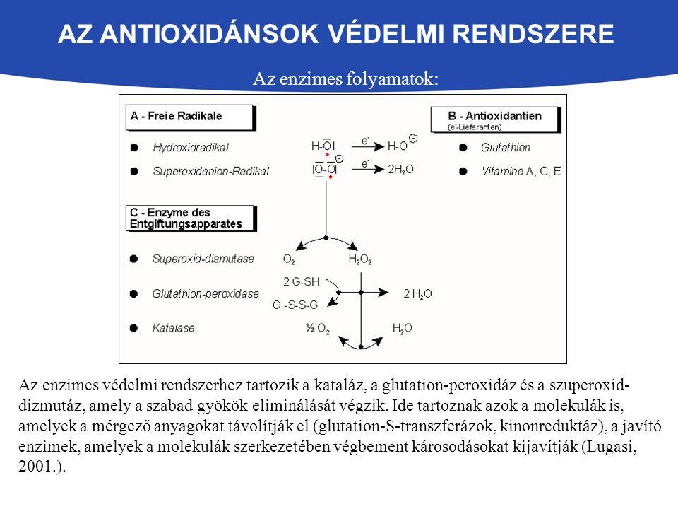 AZ ANTIOXIDÁNSOK VÉDELMI RENDSZERE Az enzimes folyamatok: Az enzimes védelmi rendszerhez tartozik a kataláz, a glutation-peroxidáz és a szuperoxid- dizmutáz, amely a szabad gyökök eliminálását végzik.