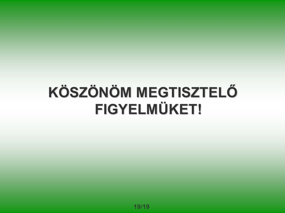 19/19 KÖSZÖNÖM MEGTISZTELŐ FIGYELMÜKET!