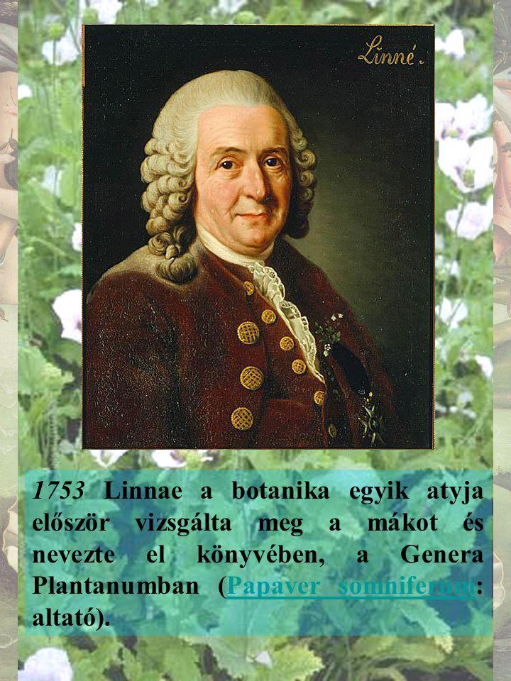 1753 Linnae a botanika egyik atyja először vizsgálta meg a mákot és nevezte el könyvében, a Genera Plantanumban (Papaver somniferum: altató).Papaver somniferum