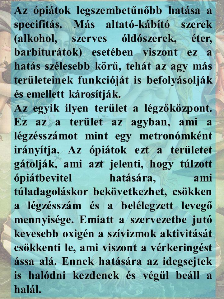 Kabay János, a magyar morfingyártás megalapítója