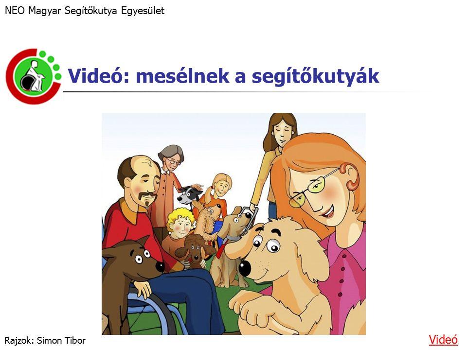 Videó: mesélnek a segítőkutyák NEO Magyar Segítőkutya Egyesület Videó Rajzok: Simon Tibor