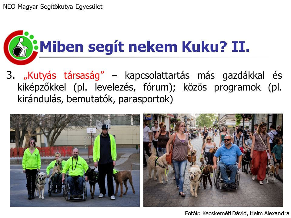"""3. """"Kutyás társaság – kapcsolattartás más gazdákkal és kiképzőkkel (pl."""