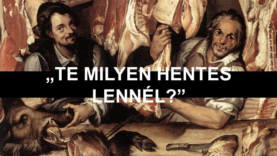 """TE MILYEN HENTES LENNÉL?"
