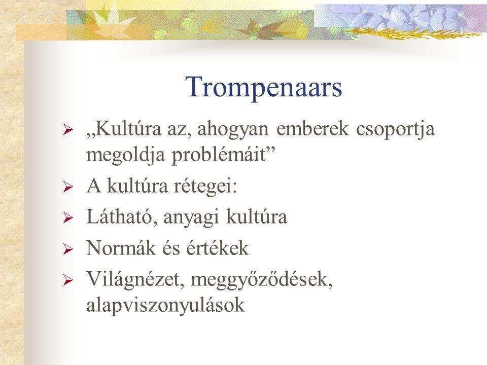 """Trompenaars  """"Kultúra az, ahogyan emberek csoportja megoldja problémáit  A kultúra rétegei:  Látható, anyagi kultúra  Normák és értékek  Világnézet, meggyőződések, alapviszonyulások"""
