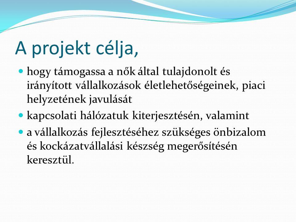 A projekt célja, hogy támogassa a nők által tulajdonolt és irányított vállalkozások életlehetőségeinek, piaci helyzetének javulását kapcsolati hálózat