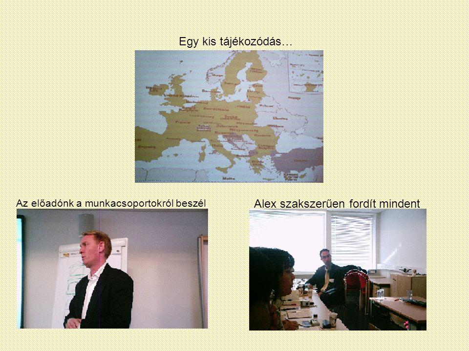 Egy kis tájékozódás… Az előadónk a munkacsoportokról beszél Alex szakszerűen fordít mindent