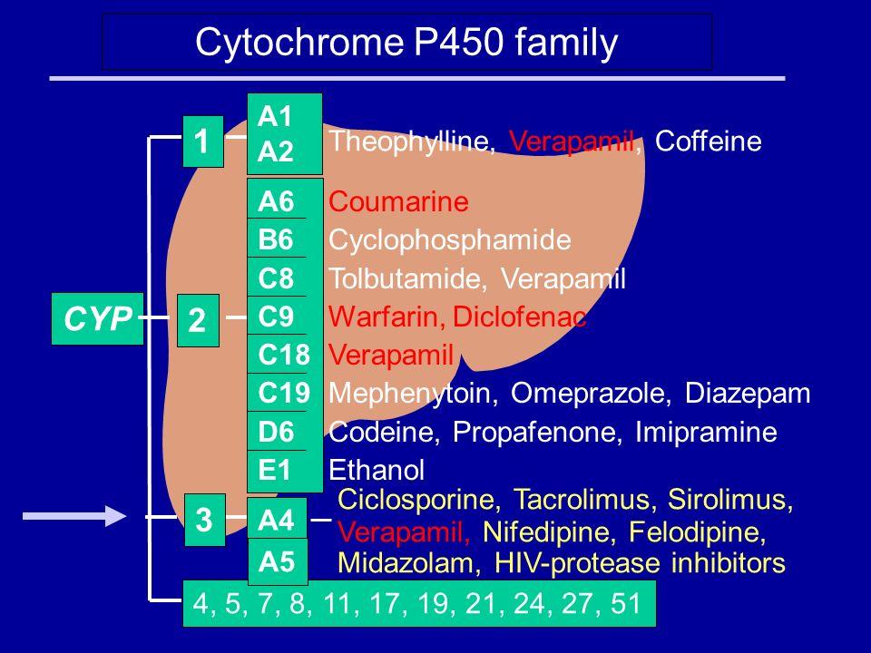 Cytochrome P450 family CYP 4, 5, 7, 8, 11, 17, 19, 21, 24, 27, 51 Coumarine Cyclophosphamide Tolbutamide, Verapamil Warfarin, Diclofenac Verapamil Mephenytoin, Omeprazole, Diazepam Codeine, Propafenone, Imipramine Ethanol 2 Theophylline, Verapamil, Coffeine 1 Ciclosporine, Tacrolimus, Sirolimus, Verapamil, Nifedipine, Felodipine, Midazolam, HIV-protease inhibitors A4 3 A1 A2 A6 B6 C8 C9 C18 C19 D6 E1 A5
