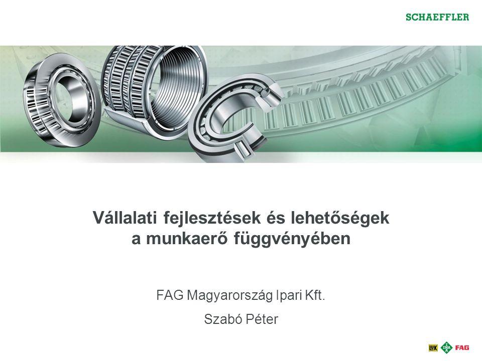 Vállalati fejlesztések és lehetőségek a munkaerő függvényében FAG Magyarország Ipari Kft.