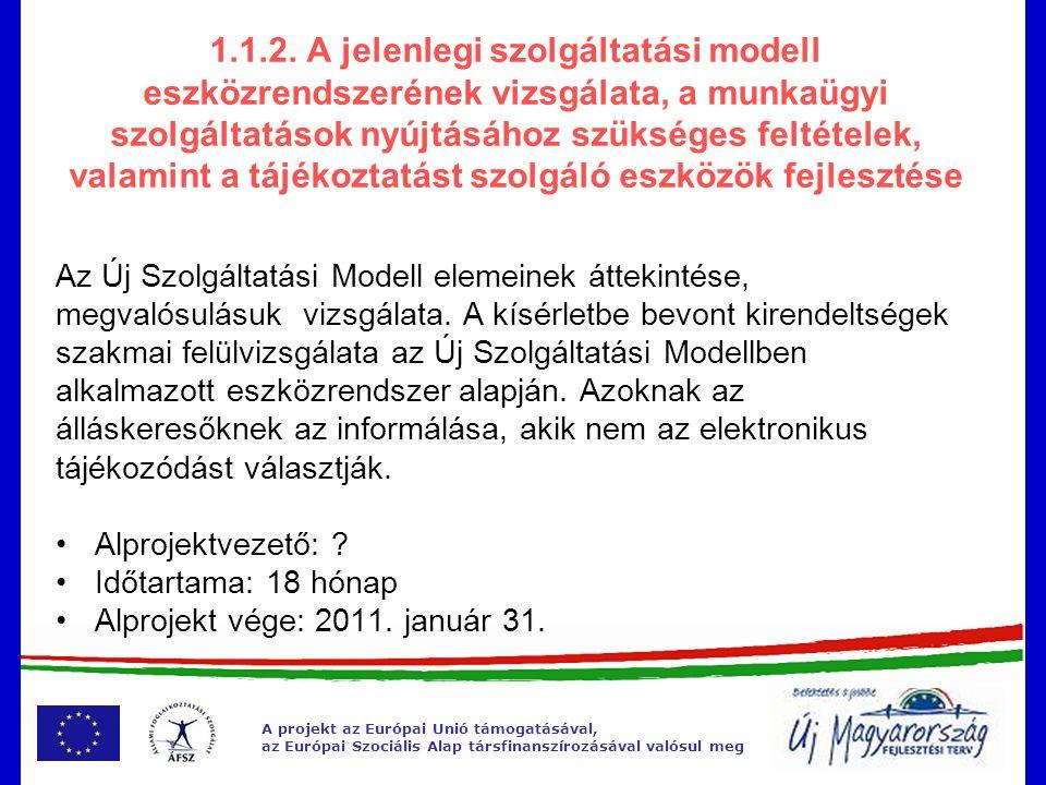 """A projekt az Európai Unió támogatásával, az Európai Szociális Alap társfinanszírozásával valósul meg 1.2.2 """"Szolgáltatásfejlesztés néhány eredménye  Egységes működés és arculat  Szakmai anyagok és módszertani ajánlások megfelelő alkalmazásával több megváltozott munkaképességű ügyfél kap egyénre szabott szolgáltatást és kerül ki, vissza a munkaerőpiacra  Önálló portál  Célcsoport irányos tájékoztató anyagok  Szakmai rendezvények  A meglévő anyagok, bevált gyakorlatok mindenki számára hozzáférhetővé válnak, a """"Jó gyakorlatok száma bővül"""