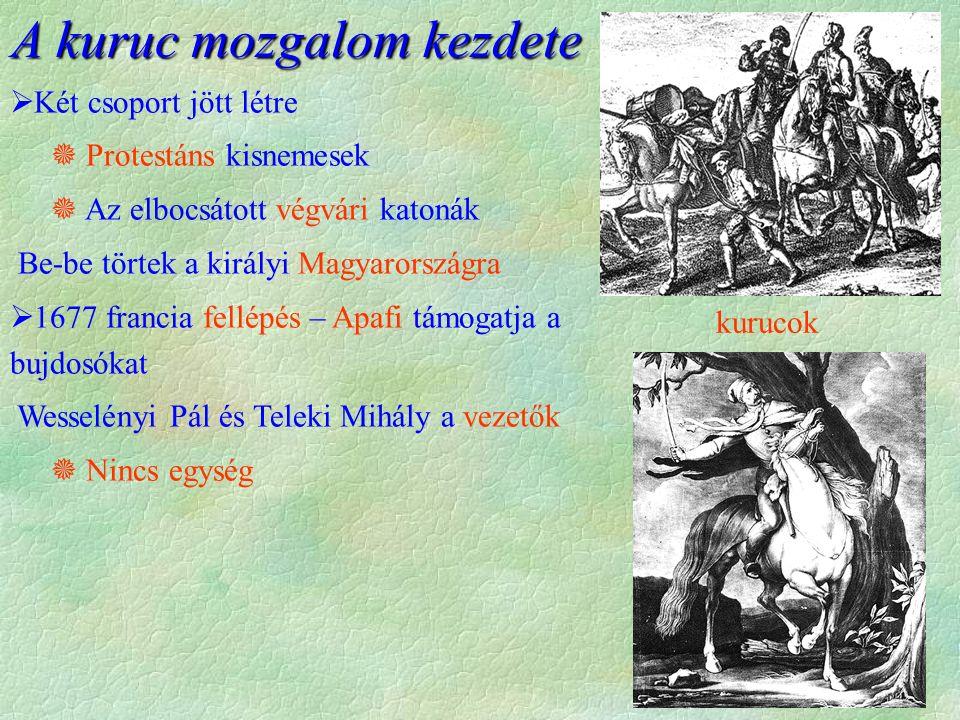 kurucok A kuruc mozgalom kezdete  Két csoport jött létre  Protestáns kisnemesek  Az elbocsátott végvári katonák Be-be törtek a királyi Magyarország
