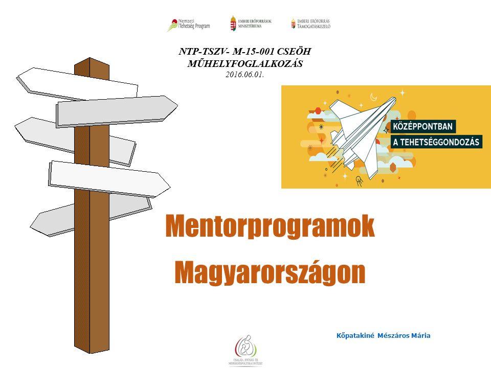 A résztvevő: nyitott a nevelési-tanulási környezetek újszerű megoldásaira, fejlesztéseire, azok adaptív átadására, bemutatására elfogadja az értékelés fejlesztő jellegének szerepét és kész az ezt szolgáló módszerek alkalmazására, elkötelezett a reflektív szakmai szerep megvalósítása- és támogatása iránt,  ezért fontosnak tartja az önreflexió, önelemzés módszertanának alkalmazását,  elfogadja, hogy a saját szakmai önfejlesztése, s folyamatos megújulása az alapja annak, hogy mások fejődését támogathassa.