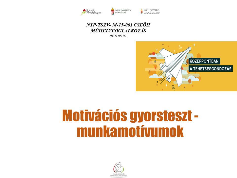 NTP-TSZV- M-15-001 CSEÖH MŰHELYFOGLALKOZÁS 2016.06.01. Motivációs gyorsteszt - munkamotívumok