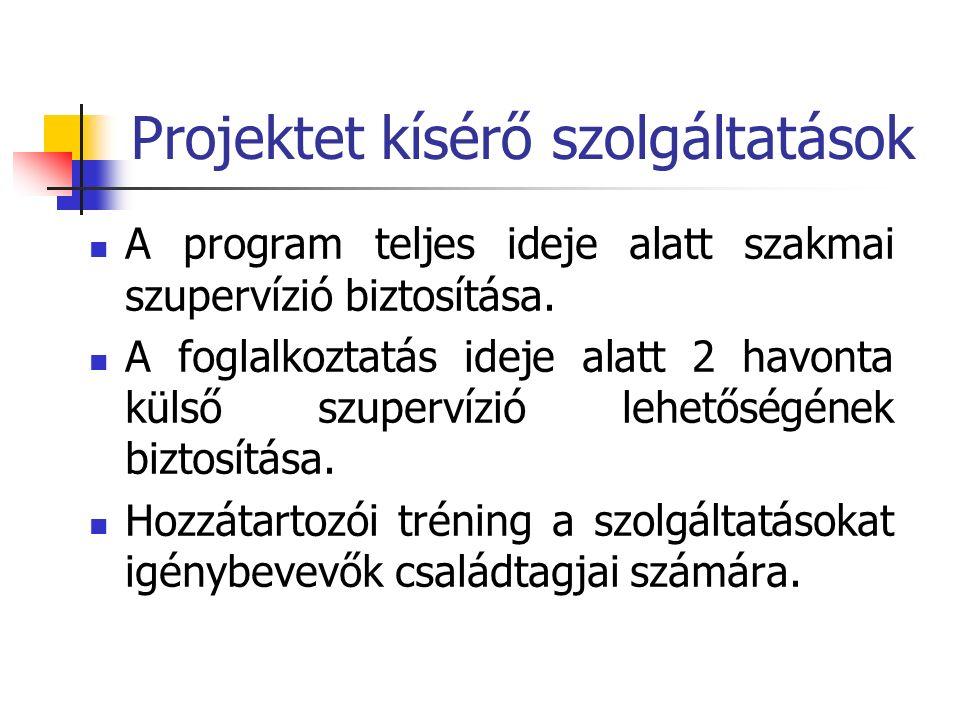 Projektet kísérő szolgáltatások A program teljes ideje alatt szakmai szupervízió biztosítása.