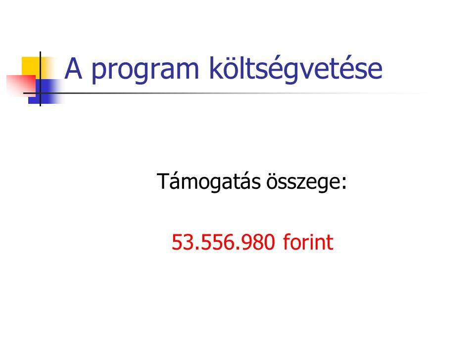 A program költségvetése Támogatás összege: 53.556.980 forint