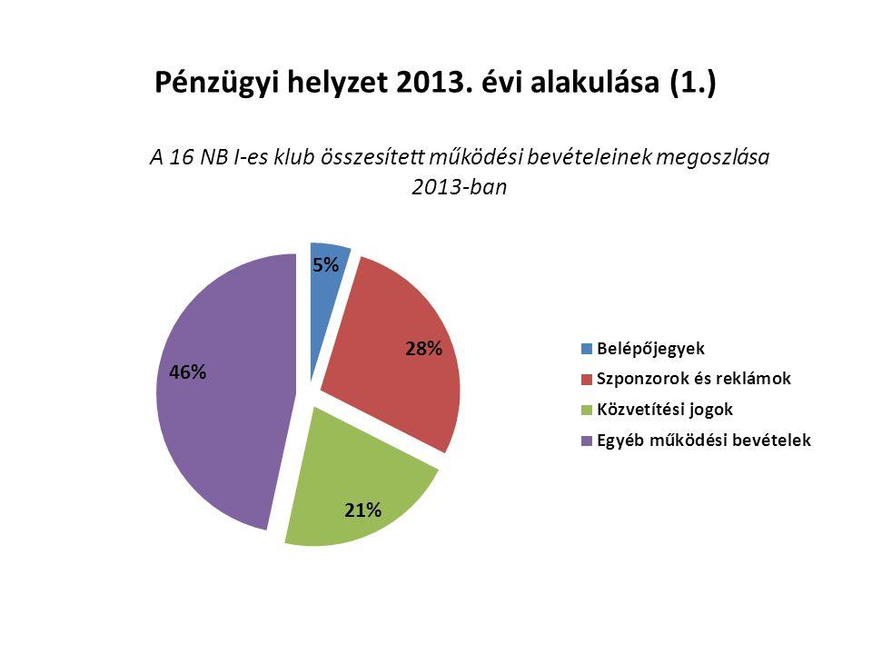 Pénzügyi helyzet 2013. évi alakulása (1.)