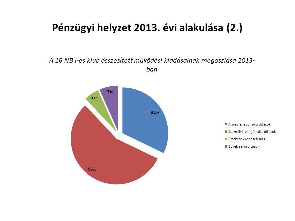 Pénzügyi helyzet 2013. évi alakulása (2.)