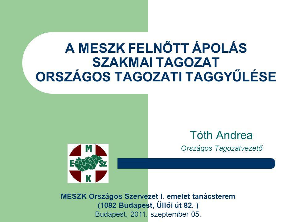 2010.évi tagozati költségvetés Tagozati költségkeret: 200.000 Ft.