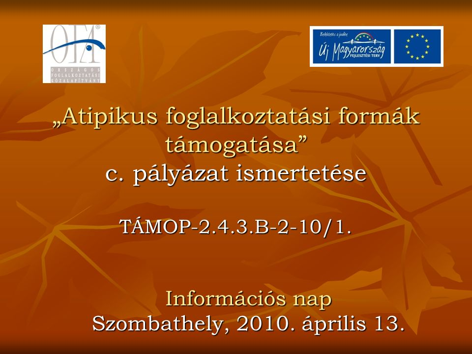 """""""Atipikus foglalkoztatási formák támogatása c.pályázat ismertetése TÁMOP-2.4.3.B-2-10/1."""