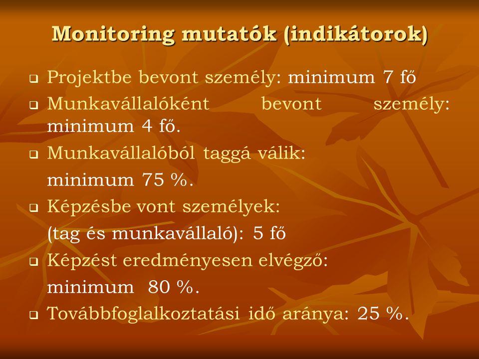 Monitoring mutatók (indikátorok)   Projektbe bevont személy: minimum 7 fő   Munkavállalóként bevont személy: minimum 4 fő.