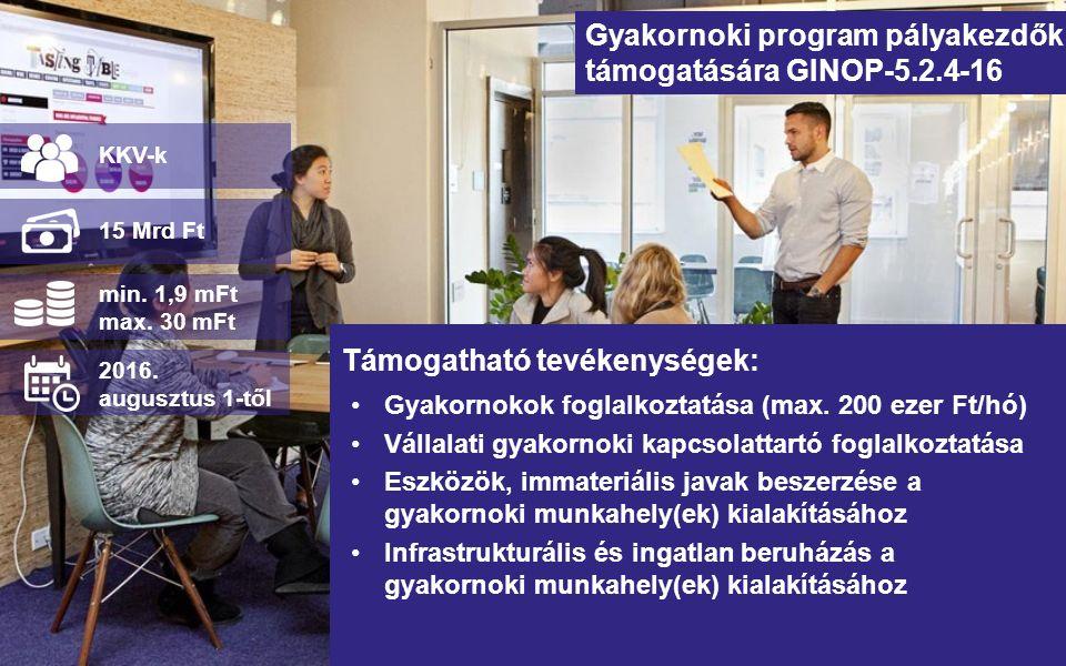 Gyakornoki program pályakezdők támogatására GINOP-5.2.4-16 Gyakornokok foglalkoztatása (max. 200 ezer Ft/hó) Vállalati gyakornoki kapcsolattartó fogla