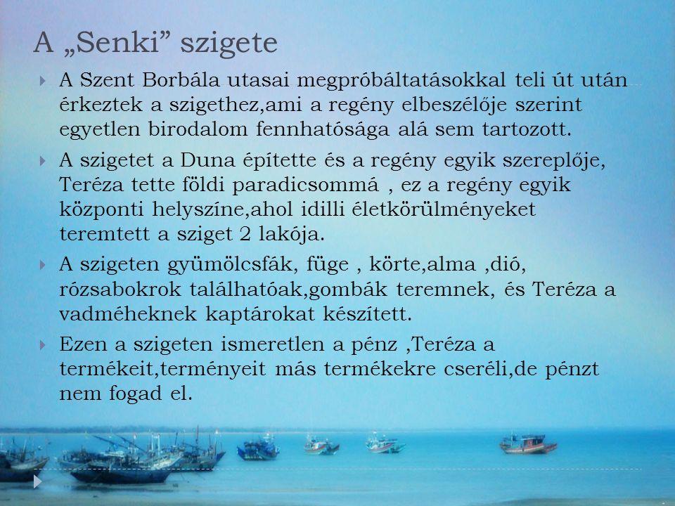  A Szent Borbála utasai megpróbáltatásokkal teli út után érkeztek a szigethez,ami a regény elbeszélője szerint egyetlen birodalom fennhatósága alá sem tartozott.