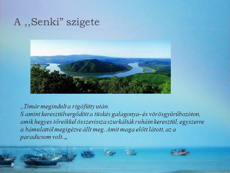 A,,Senki szigete,,Timár megindult a rigófütty után.