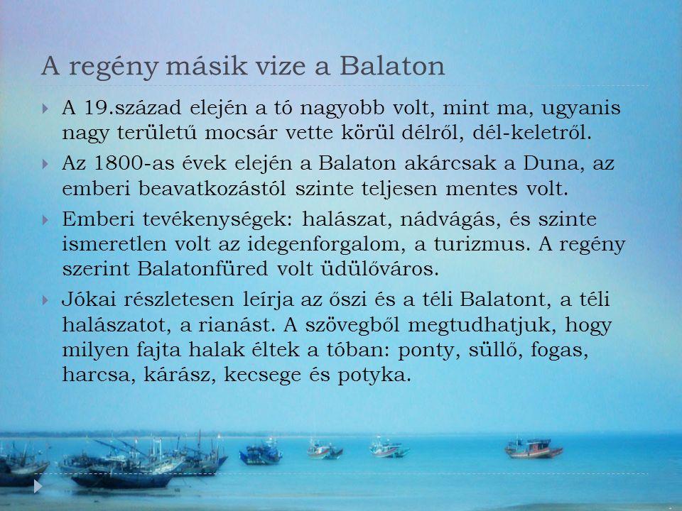 A regény másik vize a Balaton  A 19.század elején a tó nagyobb volt, mint ma, ugyanis nagy területű mocsár vette körül délről, dél-keletről.
