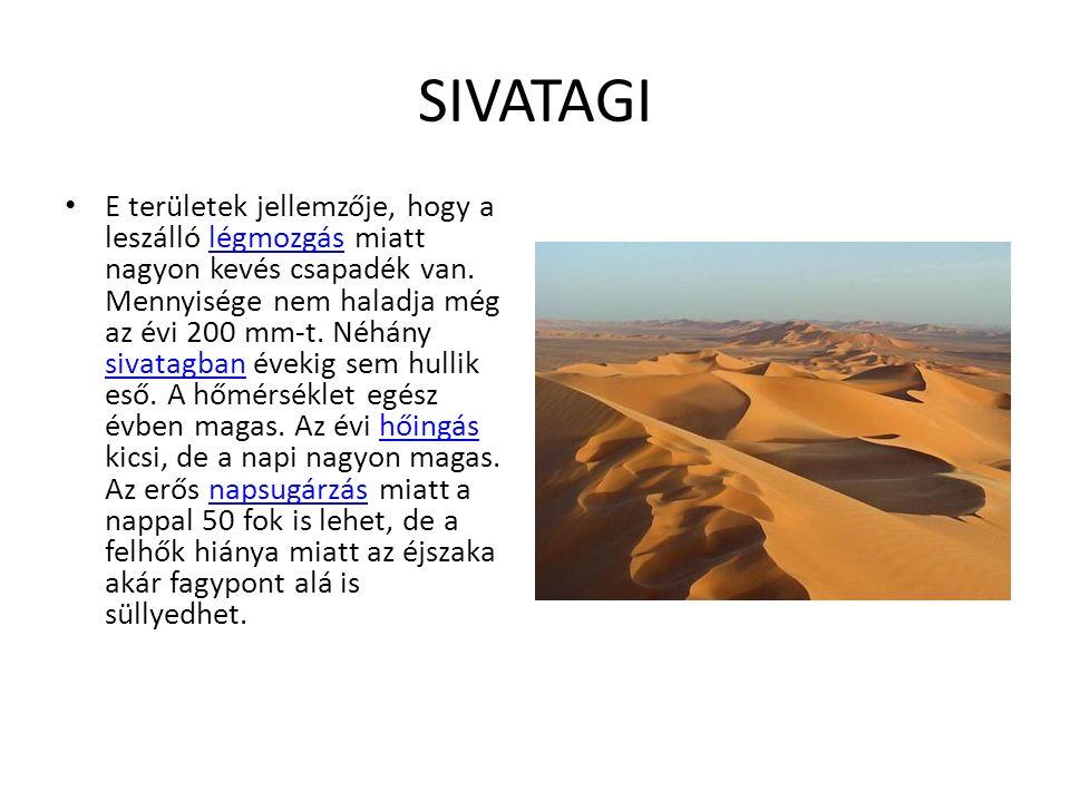 SIVATAGI E területek jellemzője, hogy a leszálló légmozgás miatt nagyon kevés csapadék van.