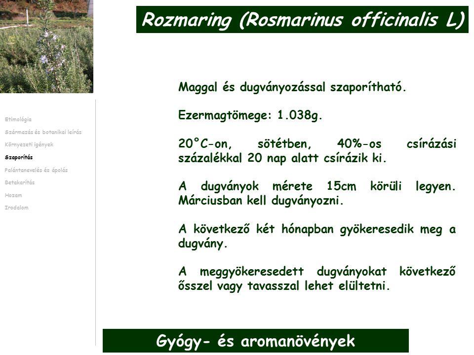 Gyenge talajokon indokolt lehet szerves trágya kijuttatása 25 t/ha Palántaneveléshez a vetőmagokat az üvegházban tavasszal kell elvetni.