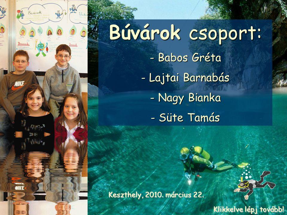 Búvárok csoport: - Babos Gréta - Lajtai Barnabás - Nagy Bianka - Süte Tamás Keszthely, 2010.
