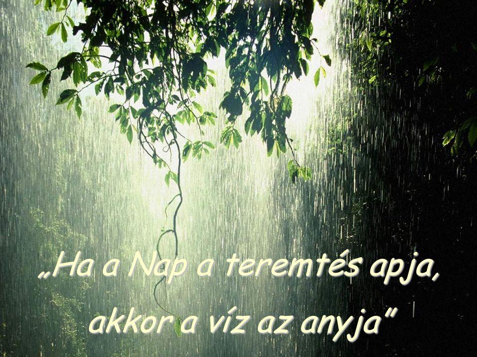 """""""Ha a Nap a teremtés apja, akkor a víz az anyja"""